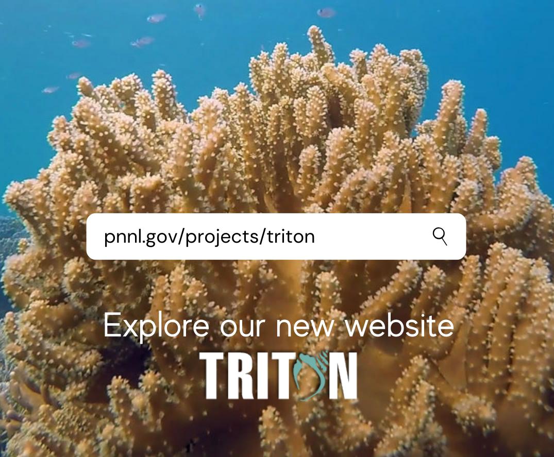 Join the Triton Initiative (2)-1